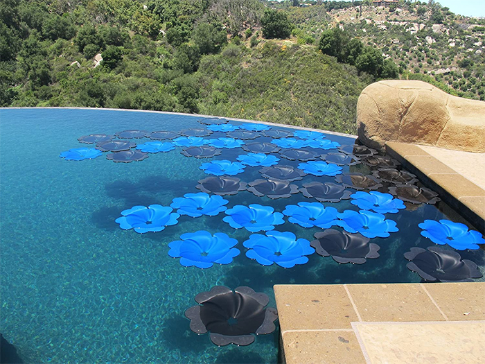 solar panel flowers black blue